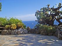 Jaskrawy błękitny nawadnia morze śródziemnomorskie przez kaktusa Jardin Exotique boatanical ogród z wysokim s i sukulentów Zdjęcie Stock