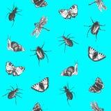 Jaskrawy bezszwowy lato wzór z motylami, ścigami i dragonflies, royalty ilustracja