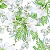 Jaskrawy bezszwowy wzór z kwiatami ślaz jukka beak dekoracyjnego latającego ilustracyjnego wizerunek swój papierowa kawałka dymów Zdjęcia Stock