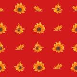 Jaskrawy bezszwowy wzór z słonecznikami R?ka rysuj?cy akwarela kwiaty ilustracja wektor