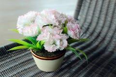 Jaskrawy biały kwiat Fotografia Royalty Free