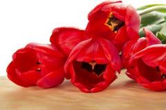 Jaskrawy bukiet czerwoni tulipany na papierze zdjęcia royalty free