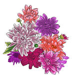 Jaskrawy chryzantema kwiatu bukiet odizolowywający Zdjęcie Royalty Free