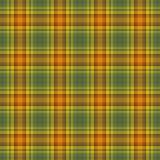 Jaskrawy Ciepła Szkocka krata Zdjęcia Royalty Free
