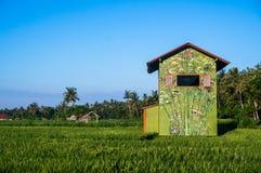 Jaskrawy coloured dom na ryżowym tarasie Obrazy Royalty Free
