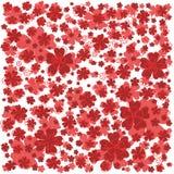 Jaskrawy czerwień wzór z prążkowanymi i barwionymi kwiatami Fotografia Stock