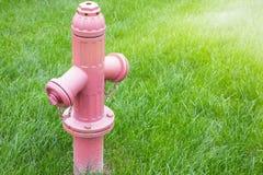 Jaskrawy czerwony odosobniony pożarniczy hydrant siedzi w a świeżo obraz stock