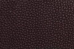 Jaskrawy czerwony rzemienny tekstury tło Zbliżenie fotografia Fotografia Stock