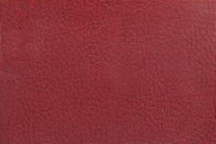 Jaskrawy czerwony rzemienny tekstury tło Zbliżenie fotografia Zdjęcie Stock