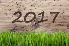 Jaskrawy Drewniany tło, Gras, tekst 2017 Obraz Stock