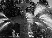 Jaskrawy i załzawiony spojrzenie przy Forsyth parkiem w sawannie, Gruzja obrazy stock
