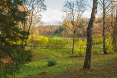 Jaskrawy jesień krajobraz Zdjęcie Stock