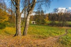 Jaskrawy jesień krajobraz Obraz Stock