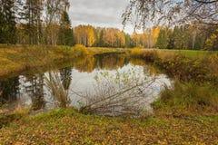 Jaskrawy jesieni wody krajobraz Obraz Royalty Free