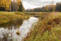 Jaskrawy jesieni wody krajobraz Fotografia Stock