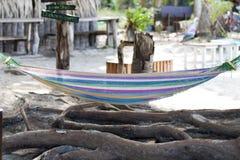 Jaskrawy kolorowy hamak nad drzewnymi korzeniami Tropikalna kawiarnia na tle zdjęcia stock