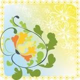 jaskrawy kwiat Zdjęcia Royalty Free