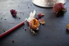 Jaskrawy kwiat na ciemnym tle Fotografia Royalty Free