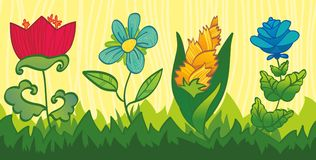 jaskrawy kwiecistych kwiatów le bezszwowa tekstura Zdjęcia Royalty Free