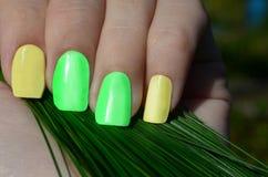 Jaskrawy lato manicure Obraz Royalty Free