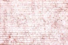 Jaskrawy naszły abstrakt menchii tło od starej ściany z cegieł zdjęcie royalty free