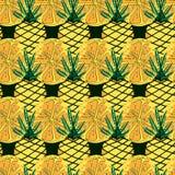 Jaskrawy owoc wzór Z cytrusów ananasami I owoc Kolorowy tło Dla Tekstylnych Lub Książkowych pokryw, produkcja, tapety obrazy stock