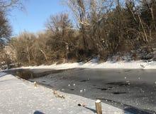 Jaskrawy pogodny niebieskie niebo zimy dzień przy zdjęcia royalty free