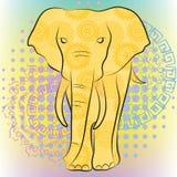 Jaskrawy słoń Obrazy Royalty Free