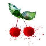 jaskrawy wiśnia ilustracji