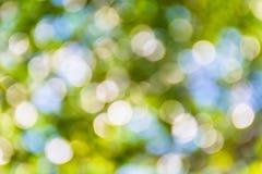 Jaskrawy - zieleni i bielu plamy bokeh abstrakt zaświeca wiosna lasu b Zdjęcia Stock