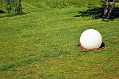 Jaskrawy - zielonej trawy tło świeży zielonej trawy pole Obraz Stock