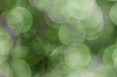 Jaskrawy - zielony bokeh Zdjęcie Stock