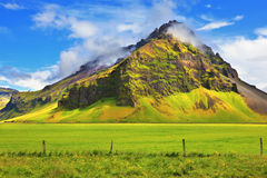 Jaskrawy - zielony kwiecisty i ziemia uprawna Zdjęcia Stock