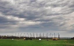 Jaskrawy - zielony pole Zdjęcie Royalty Free