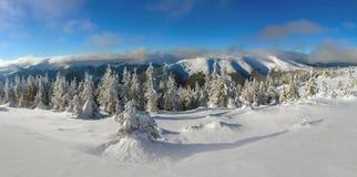 Jaskrawy zima dzień w górach zdjęcia stock