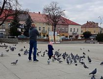 Jaslo/Poland-march 27,2018: A little girl, looking after his father, plays with the city pigeons in the central square. Father and royalty free stock photo