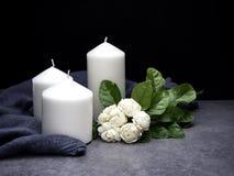 Jasmijn en kaarsen op donkere achtergrond stock foto's