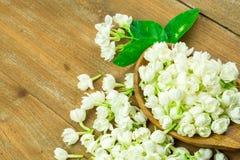 jasmijn op houten lijstachtergrond Stock Foto