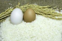 Jasmijnrijst en eieren Royalty-vrije Stock Foto's