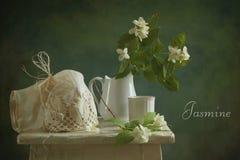 Jasmin Lizenzfreies Stockfoto