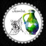 Jasmin Lizenzfreie Stockbilder