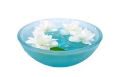 Jasmin-Blumen, die in Schüssel schwimmen Stockfoto