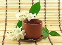 Jasmin tea Royalty Free Stock Photography