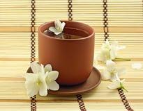 Jasmin tea Stock Image