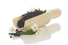Jasmin tea Royalty Free Stock Images