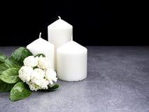 Jasmin und Kerzen auf dunklem Hintergrund lizenzfreie stockfotos