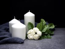 Jasmin und Kerzen auf dunklem Hintergrund stockfotos