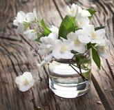 Jasminblumen über altem Holztisch Stockbild