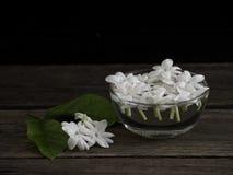 Jasmine που επιπλέει στο σαφές γυαλί στο ξύλινο υπόβαθρο στοκ εικόνες με δικαίωμα ελεύθερης χρήσης