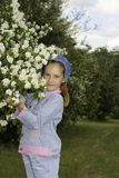 jasmine κοριτσιών θάμνων Στοκ εικόνες με δικαίωμα ελεύθερης χρήσης